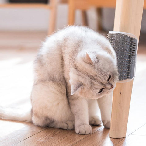 """The Mmmm"" Cat Scratcher Brush"