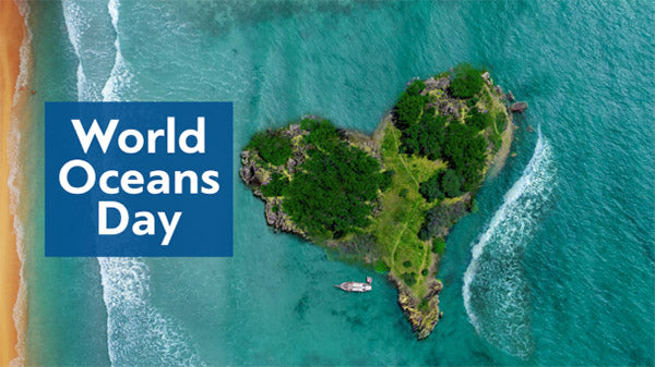 world oceans day coral reef conservation bali