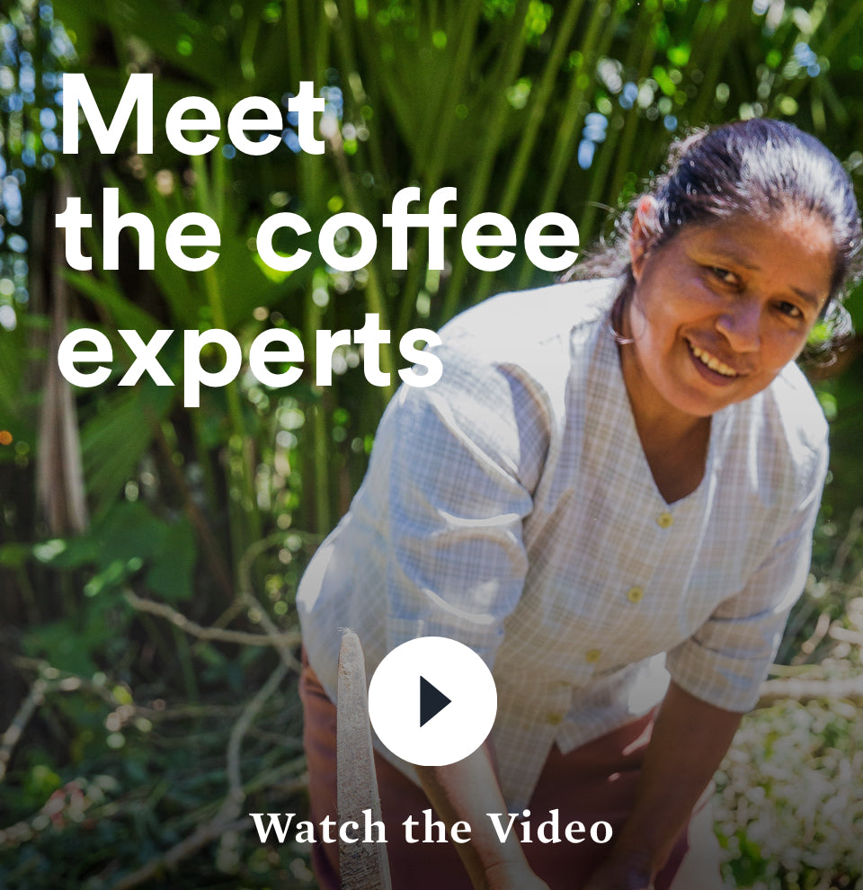Meet the coffee experts | Watch the Video