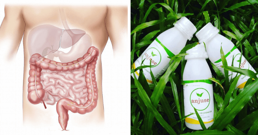 ANJUSE - A DRINK THAT CAN HELP RESTORE YOUR LIVER HEALTH NATURALLY