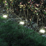 LED Solar-Powered Pathway Lights