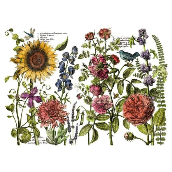 Botanists Journal Decor Transfer (24×33) | TRANSFERS | $40.00