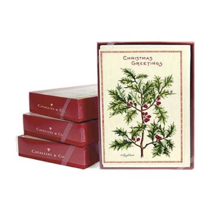 Boxed Note Cards (set of 10) | Holly | cavallini | $16.00