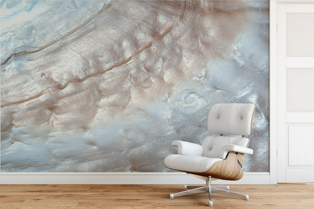 Abalone Mural Peel and Stick Wallpaper
