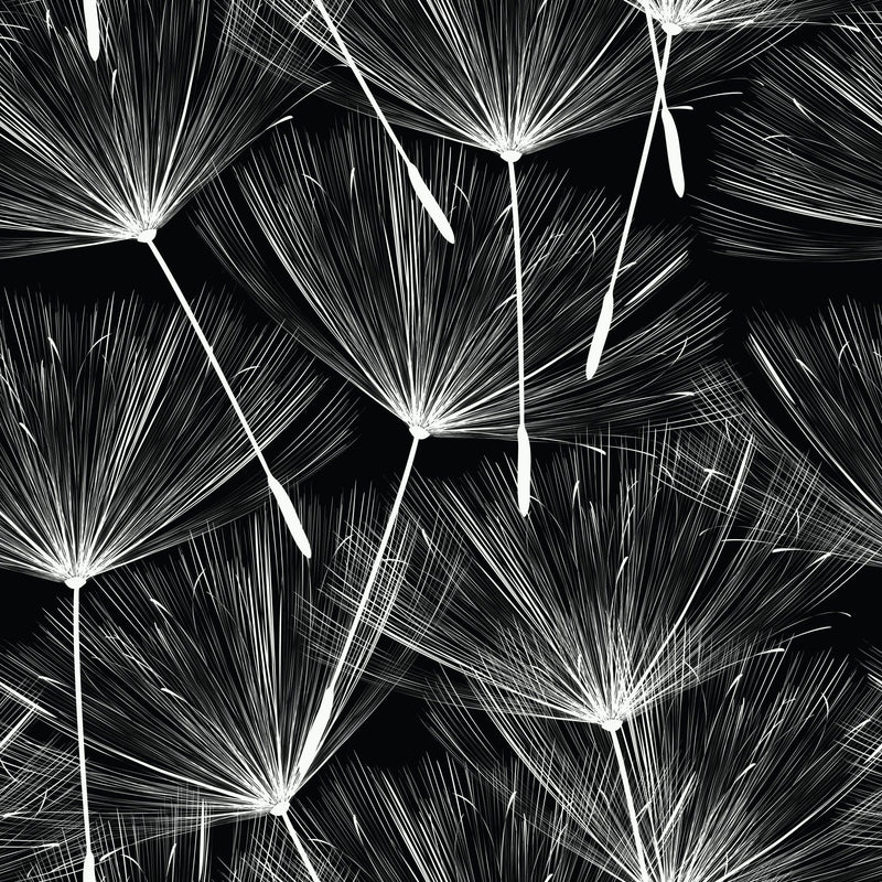 Black Make A Wish Peel and Stick Wallpaper