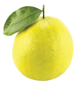 About Bergamot Essential Oil