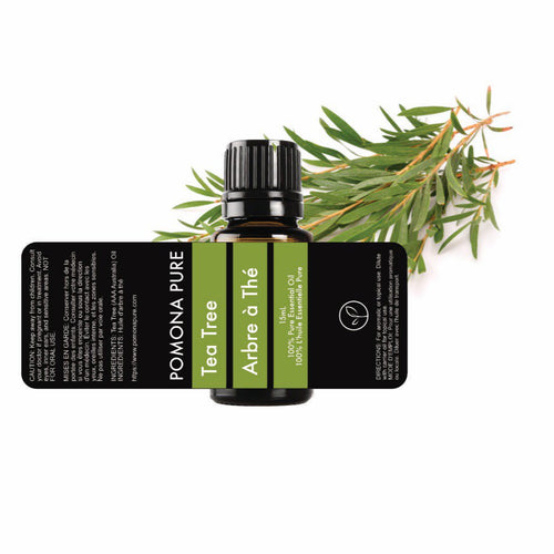 15ml Tea Tree Australian (AAA Australia) Essential Oil