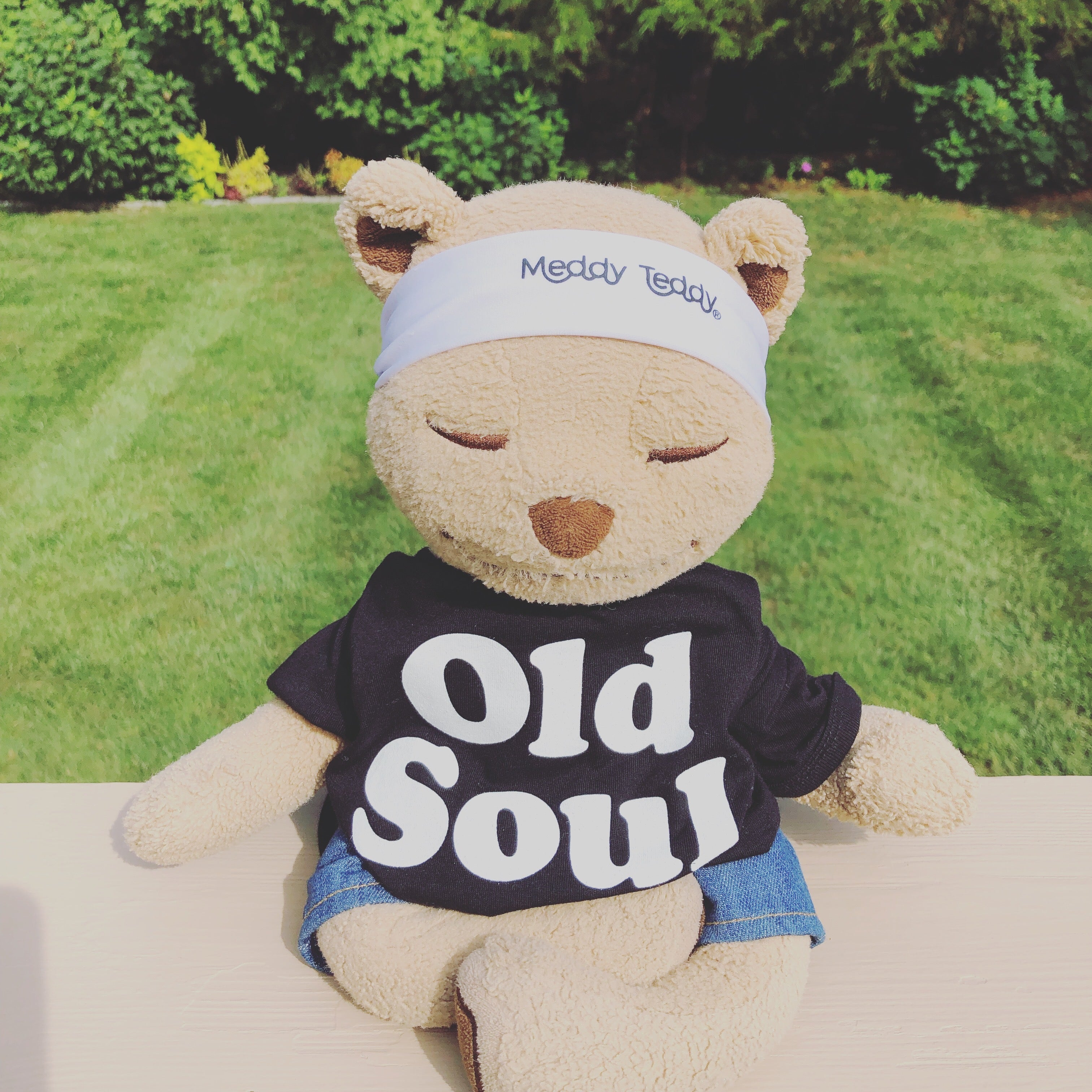 old soul Meddy the Teddy bear breath