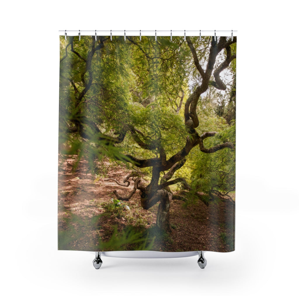 Shower Curtain: Twisty Tree