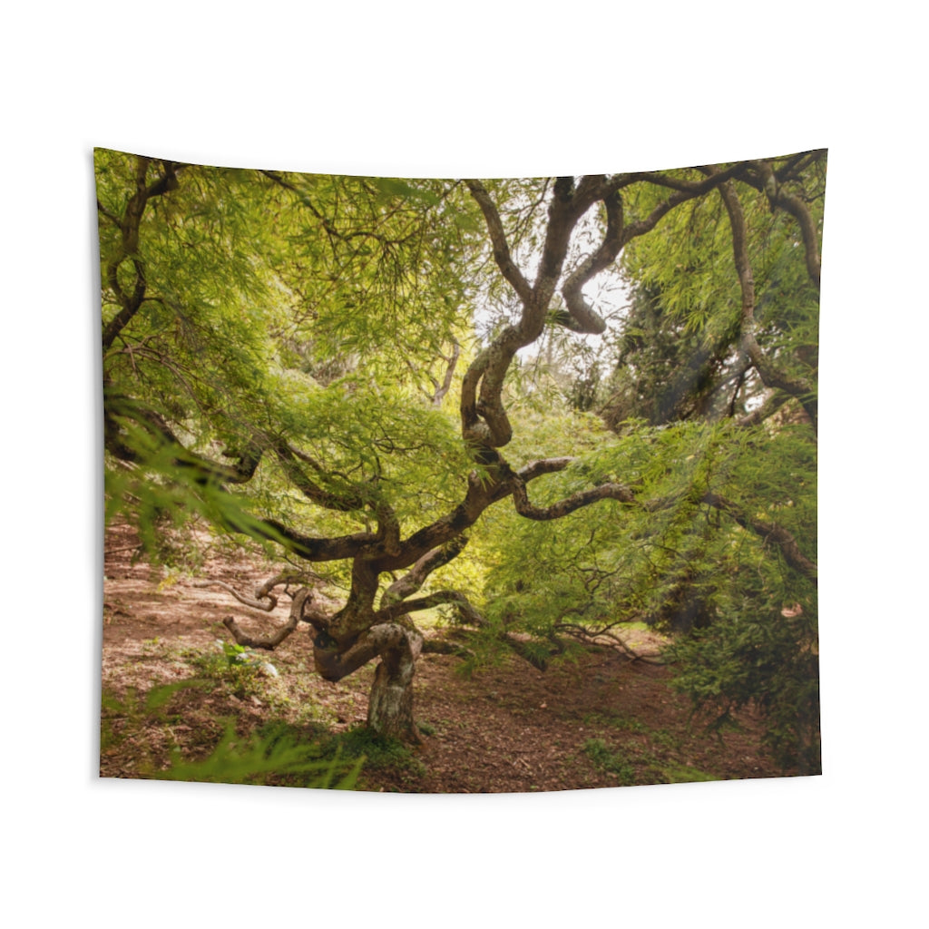 Indoor Wall Tapestries: Twisty Tree