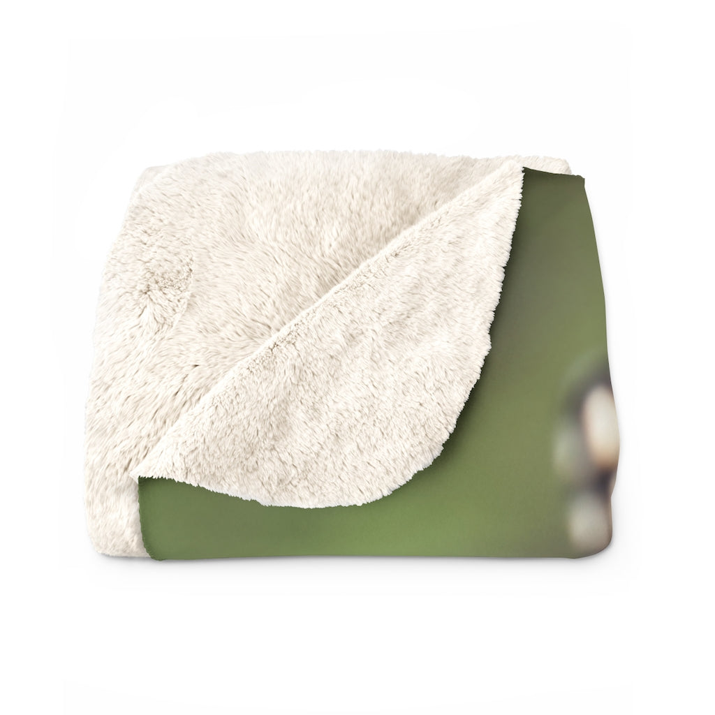 Sherpa Fleece Blanket: Butterfly