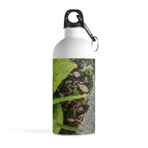Stainless Steel Water Bottle: Spring Walk