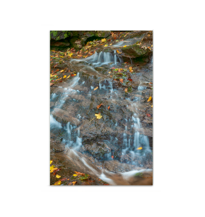 Canvas Wrap - Waterfall in the Woods