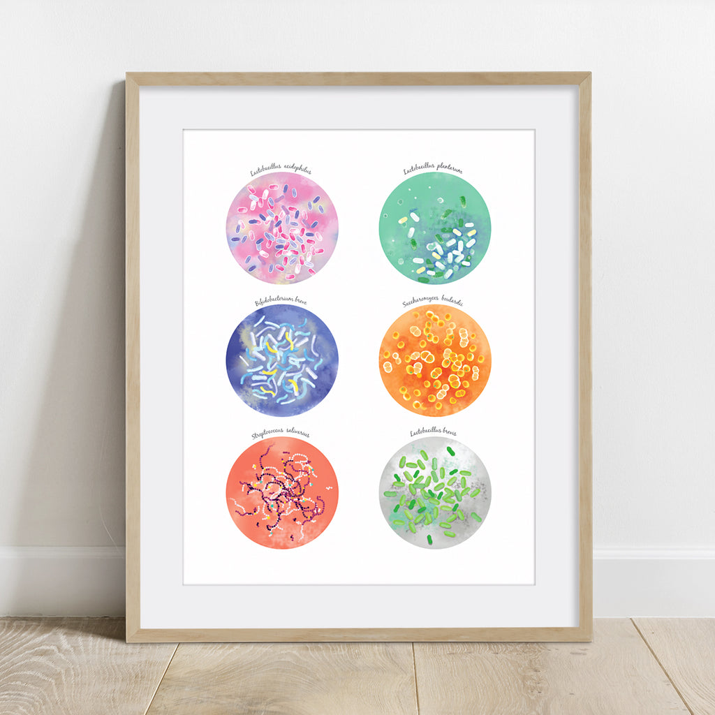 Beneficial Bacteria Collection Print