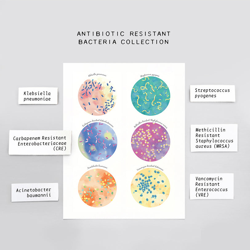 Antibiotic Resistant Bacteria Collection Print