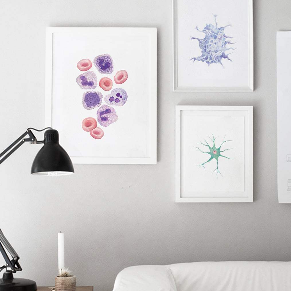 Blood Cells Art Print