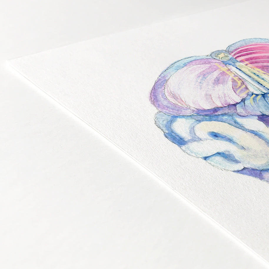 Human Brain Inferior View Watercolor Print