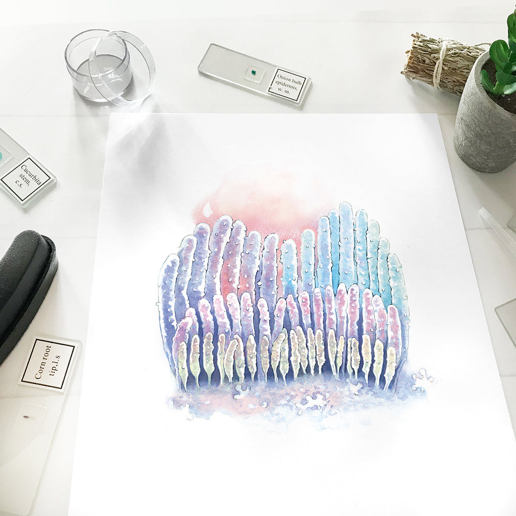 Ear Hair Cells Watercolor Art Print