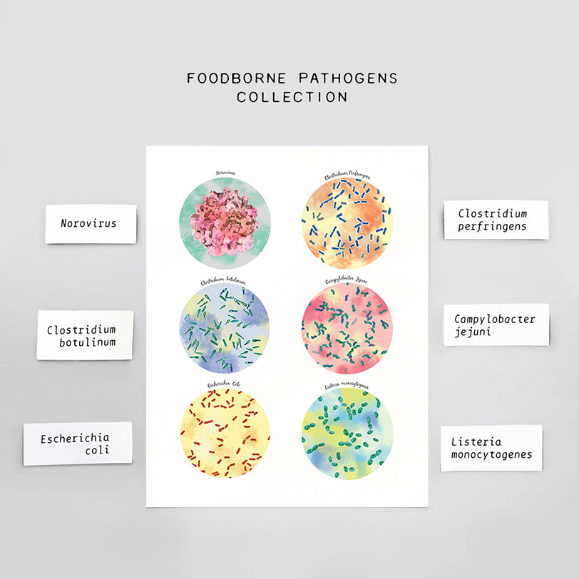 Foodborne Pathogens Collection Print