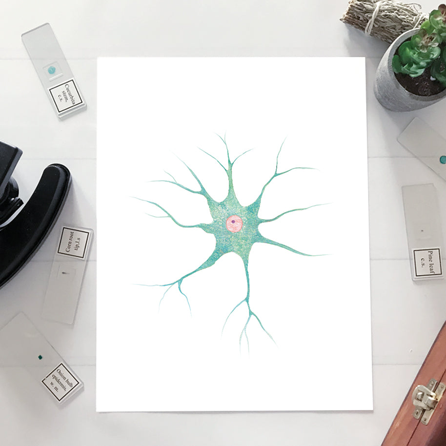 Neve Cell Watercolor Print