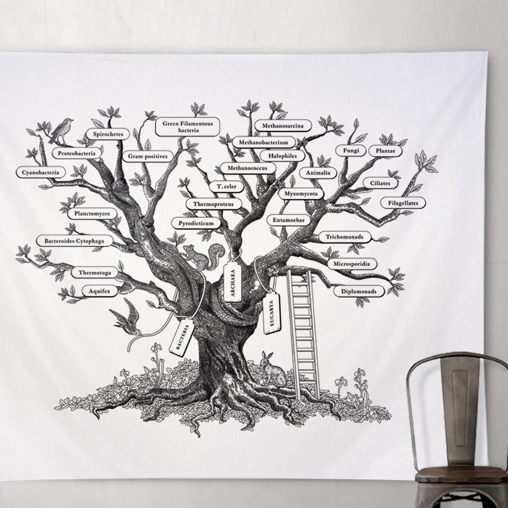 Microbiology Phylogenetic Tree of Life Tapestry