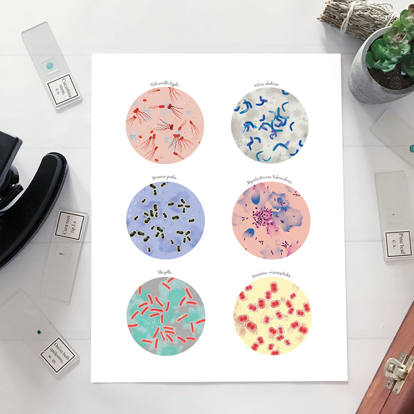 Epidemic Bacteria Collection Print