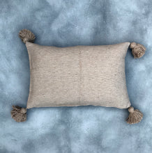 Load image into Gallery viewer, Pillow Camel | 60/40 | Incl. filling