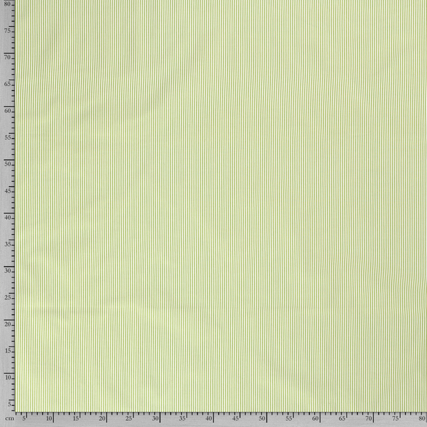 Poplin fabric Stripes Green