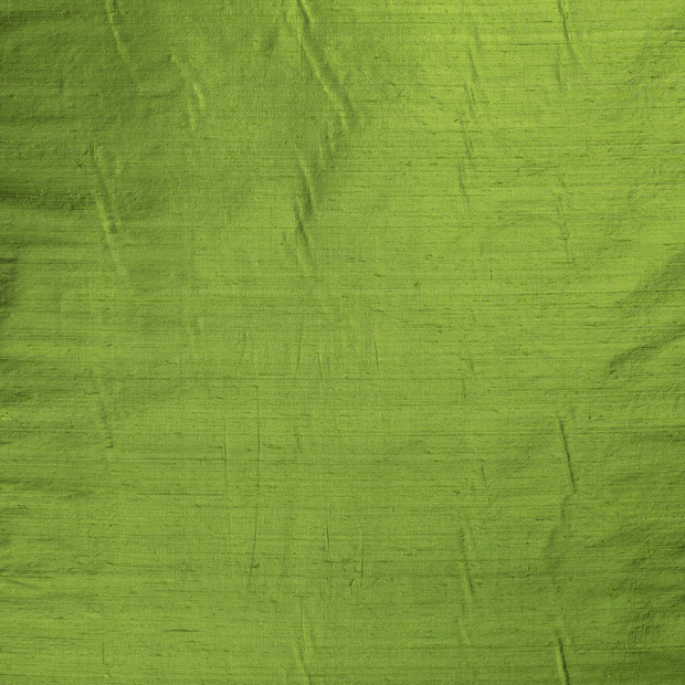 Silk Dupion fabric Forest Green slightly shiny