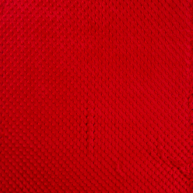 Minky fabric Red soft