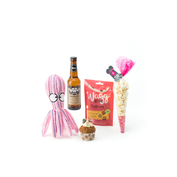 Zuce Pets Basic Doggy Birthday Pack