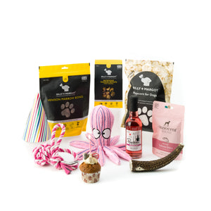Zuce Pets Super Deluxe Doggy Celebration Pack