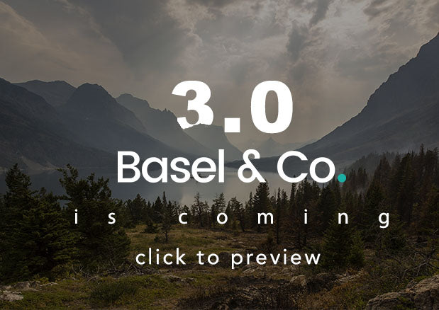Basel - Responsive eCommerce Shopify Theme (Fashion, Electronics and many more) - 1