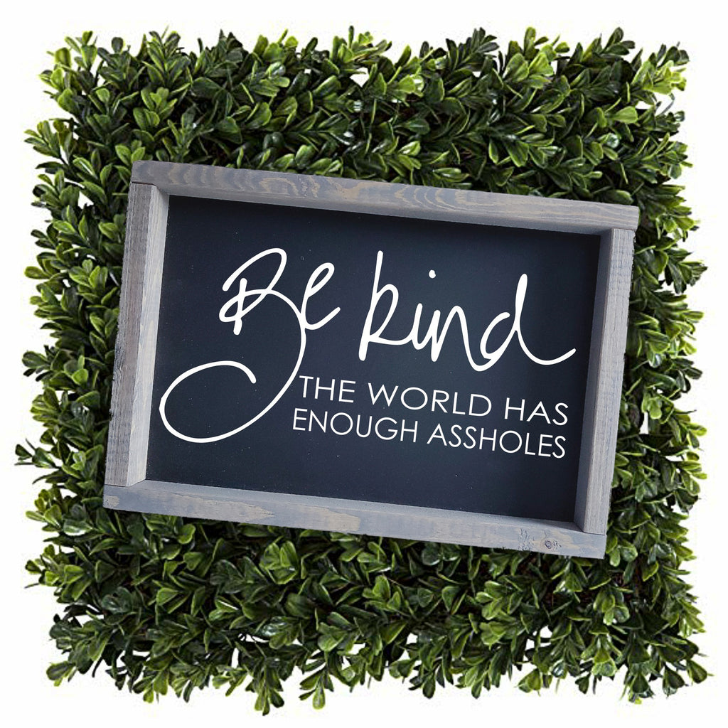 Be kind - the world has enough assholes