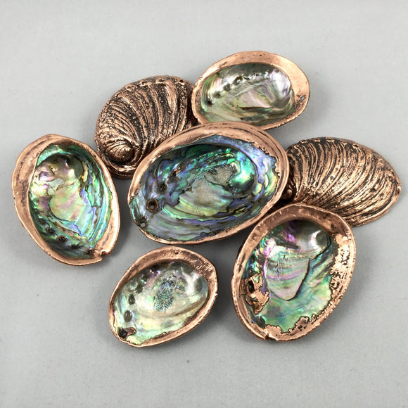 Copper Plated Paua Shell