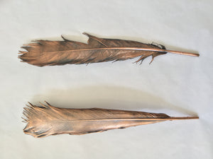 Copper Plated Turkey Feathers