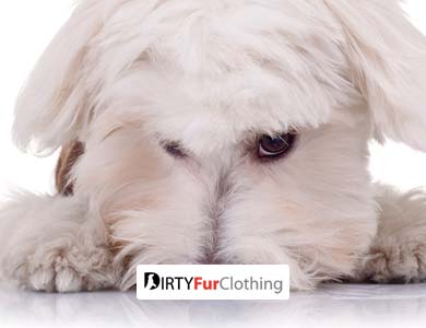 DirtyFurClothing