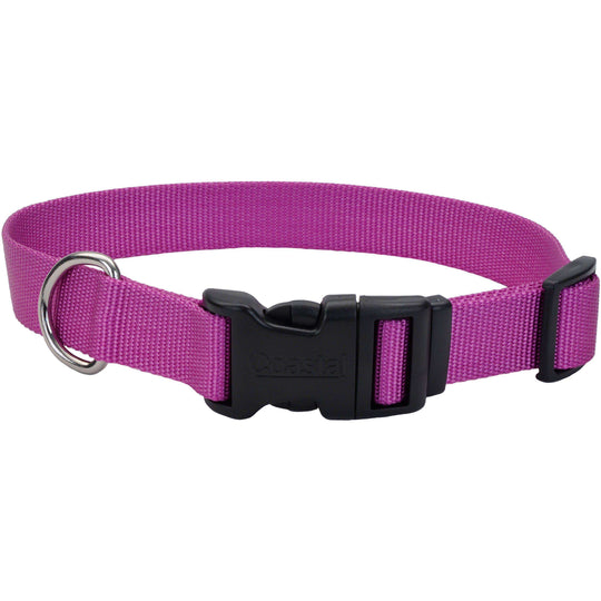 "Adjustable Nylon 3/8"" Dog Collar W/Tuff Buckle-Orchid, Neck Size 8""-12""-Coastal Pet Products-DirtyFurClothing"