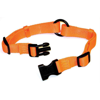 Adjustable Saferite Dog Collar-Hamilton-DirtyFurClothing