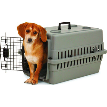 Aspenpet Traditional Plastic Kennel Crate Training Dog Carrier-Petmate-DirtyFurClothing