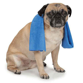 Cool Pup Cooling Dog Towel-Pet Retail Supply-DirtyFurClothing