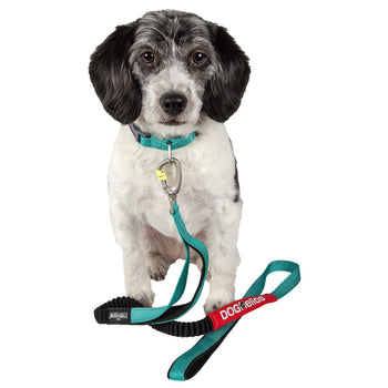 Dog Helios Neo-Indestructible Easy-Tension Sporty Embroidered Thick Durable Pet Dog Leash And Collar - Aqua Blue-Dog Helios-DirtyFurClothing