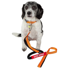 Dog Helios Neo-Indestructible Easy-Tension Sporty Embroidered Thick Durable Pet Dog Leash And Collar - Orange-Dog Helios-DirtyFurClothing