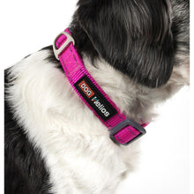 Dog Helios Neo-Indestructible Easy-Tension Sporty Embroidered Thick Durable Pet Dog Leash And Collar - Pink-Dog Helios-DirtyFurClothing