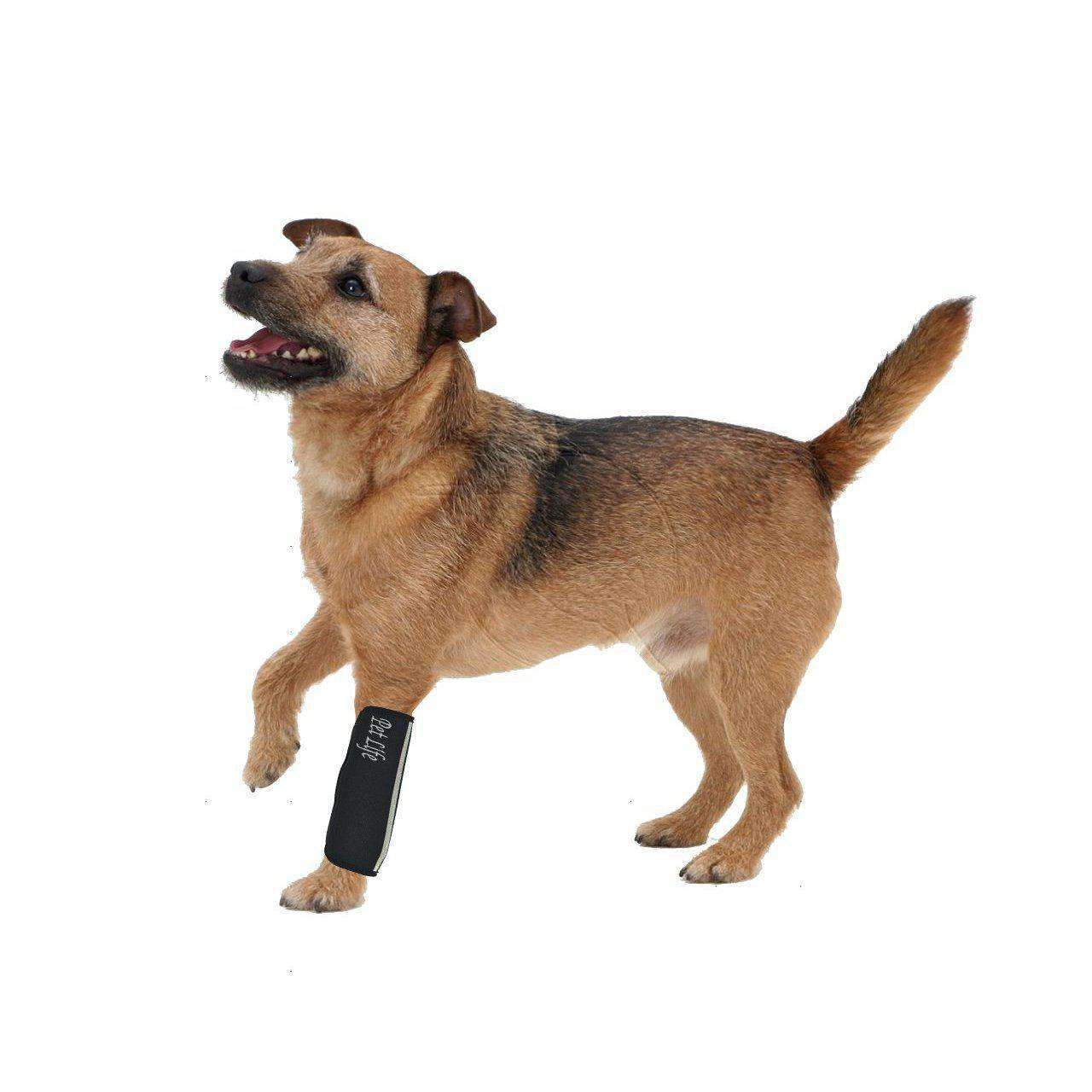 Extreme-Neoprene Joint Protective Reflective Pet Sleeves-Pet Life-DirtyFurClothing