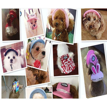 Fashionable Pets Hats With Letter Printing Dogs Peaked Caps, S-Panda Superstore-DirtyFurClothing