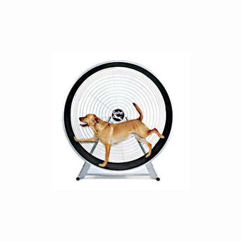Gopet Treadwheel For Large Dogs-Gopet-DirtyFurClothing