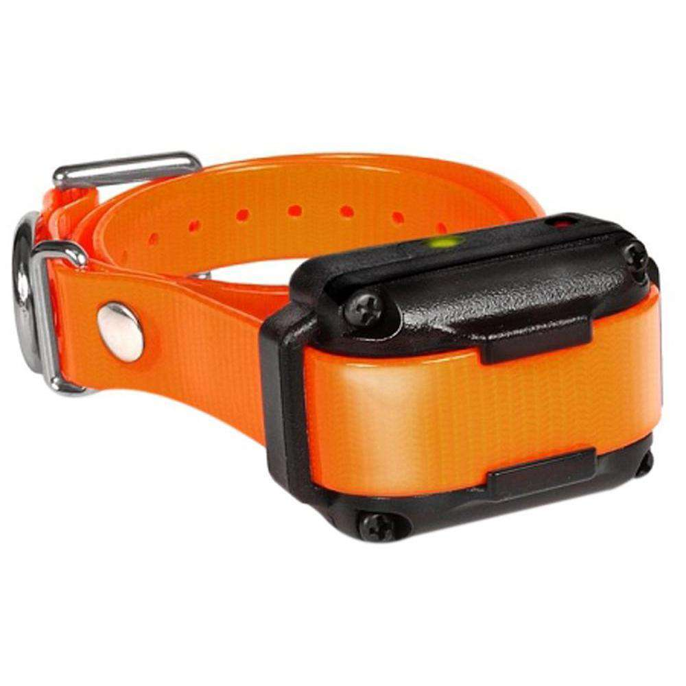Iq Plus Additional Receiver Orange Strap-Dogtra-DirtyFurClothing