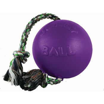 Jolly Pets - Romp-n-roll Ball Dog Toy-Jolly Pets-DirtyFurClothing