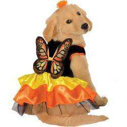 Pet Costume Butterfly Small-DirtyFurClothing-DirtyFurClothing
